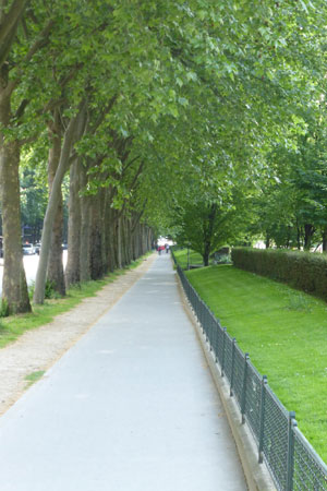 sidewalk and trees